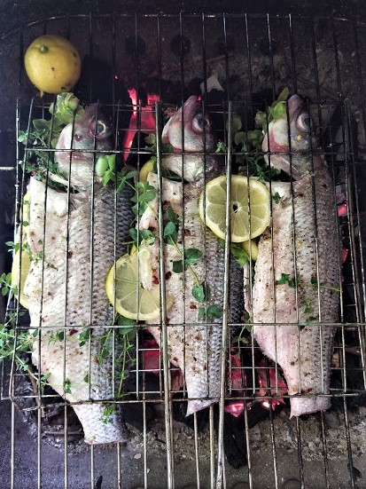 grilled fish3