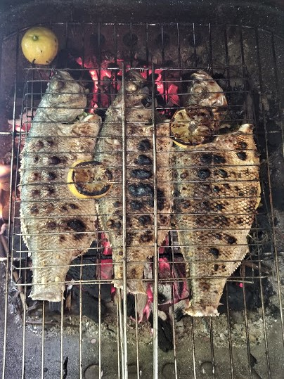 grilled fish4